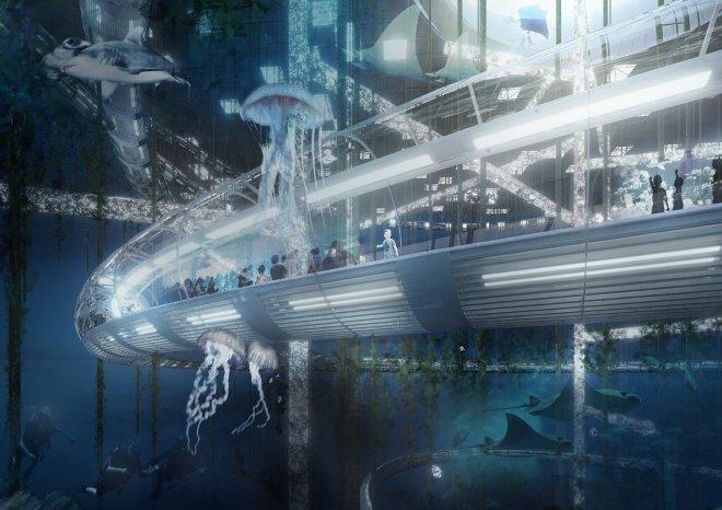 Фото. Огромный подводный зоопарк