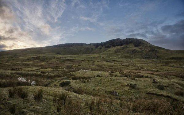 Фото. На равнине Карнкасл