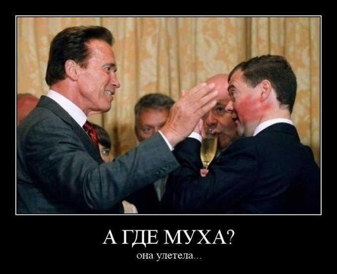 Шварцнегер и Медведев