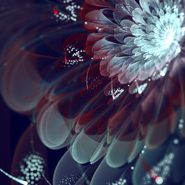 fractal_flowers2