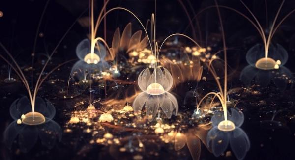 fractal_flowers6