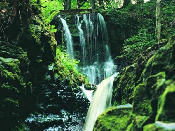 Фото. Водопад в природном парке Гленарифф