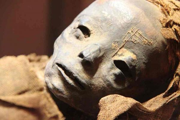 Фото. Сохранившаяся мумия