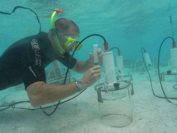Фото. Изучение кислотности океанов