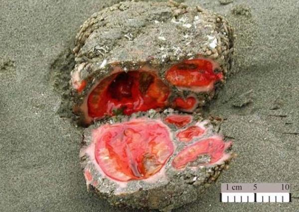 Фото. Кровавый камень