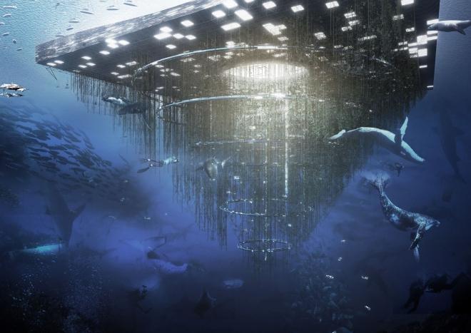 Фото. Биодайвер под водой