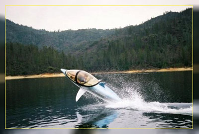 Фото. Интересно - механический дельфин