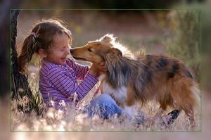 Фото. Девочка и собака