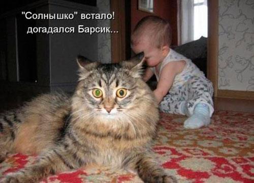 Фото.О коте Барсике!