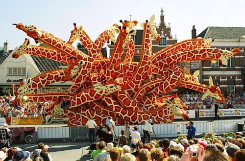 Фото. Цветочный фестиваль