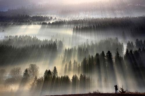 Фото. Утренний туман от Богуслава Стремпеля