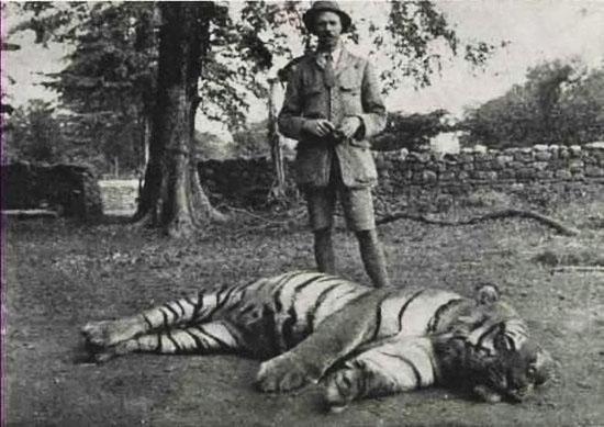 Champavatskaya-tigrica-i-ohotnik-ee-ubivshiy