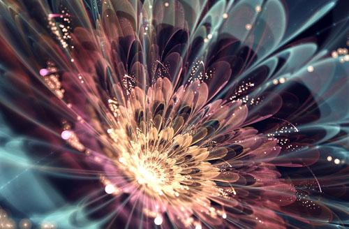 Фото. Фрактальные цветы
