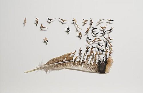 Фото. Композиции из перьев