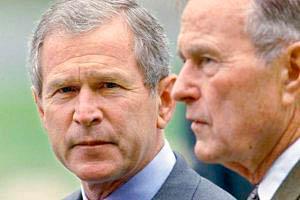 Фото. Буш