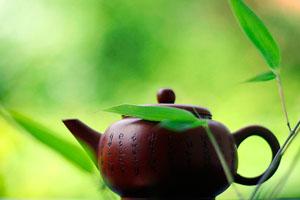 Фото. Зеленый чай