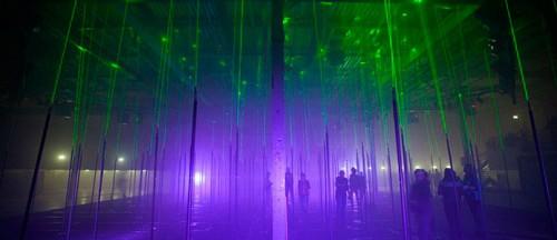Фото. Лазерный лес