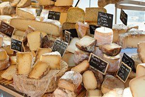 Фото. Разнообразие сыра