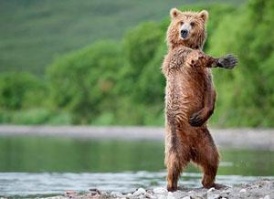 Фото. Я люблю танцевать