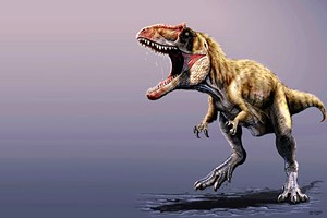Фото. Обнаружен динозавр