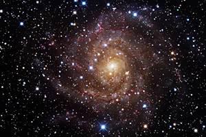 Фото. Сколько звезд