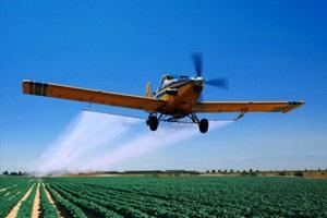 Фото. Самолет летит над зеленым полем