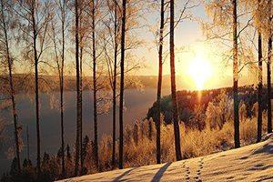 Фото. Природа в Швеции