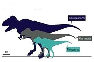 Фото. Три динозавра для сравнения