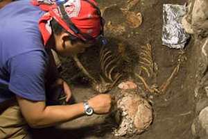Фото. Мужчина нашел скелет человека