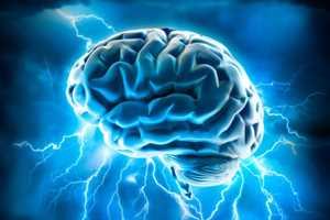 Наэлектризованность нашего мозга