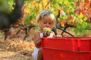 Девочка очень любит виноград