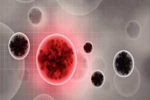 Эбола обнаружен в сперме