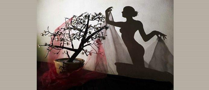 девушка как искусство теней