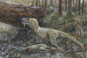 каннибализм среди динозавров