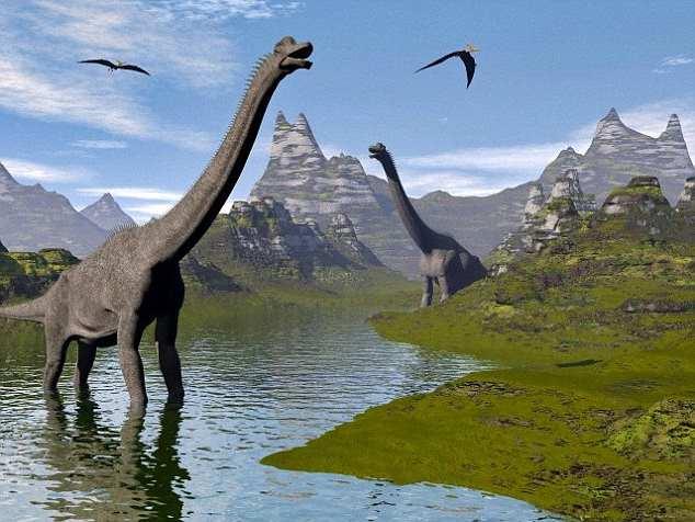 Фото. Этот цветок был современником таких динозавров как игуанодонт и брахиозавр