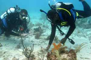 исследование океана