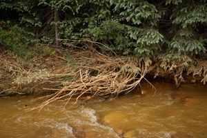 материал очищает воду