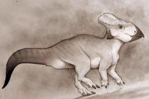 найденный динозавр
