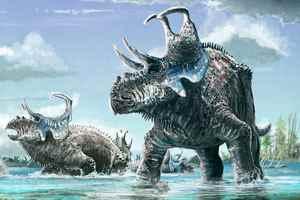 динозавр Machairoceratops cronusi