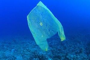 полиэтиленовый пакет в океане