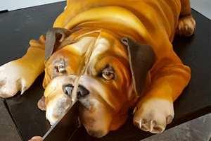 собака-торт