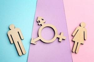 средний пол у людей