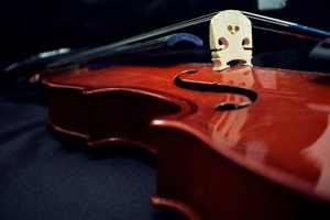 фриссоны и скрипка