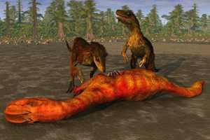 велоцирапторы едят динозавра